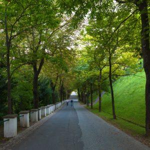 Bild Schlossberg Graz - Social Innovation Walk - Wandeltagung atempo